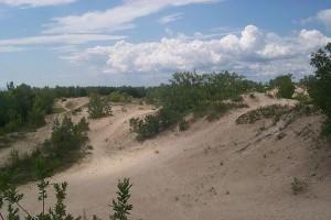 Sandbanks-dunes3-300x200
